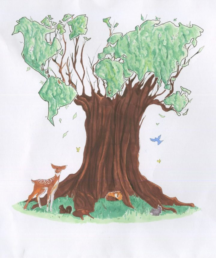 L'arbre de vie de notre Terre. Raza, 13 ans